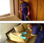 24 Hour Pest Control in Fashion Industry
