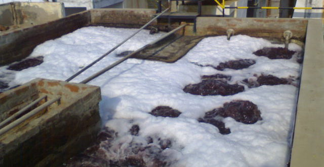Activated Sludge Tank and Treatment