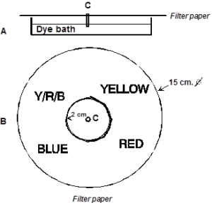 How Chromatography Filter Paper Works?